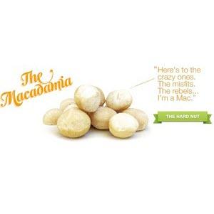 Macadamia Nuts Kernels Unsalted 101536 2
